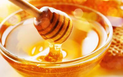 Honung skillnaderna mellan – vanlig – ekologisk – eller rå
