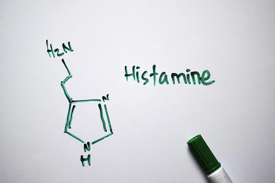 Histamin – reaktioner, hjärna, immunförsvar, magtarmfunktion