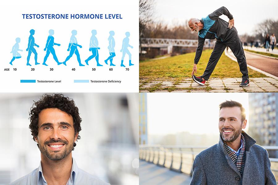 Testosteron det väldigt viktiga hormonet för män
